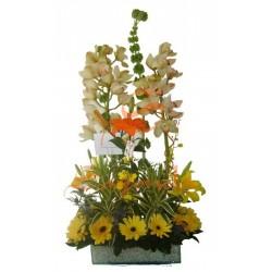 Orquídeas y Gerberas