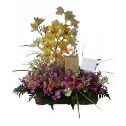 Orquídeas y Velón