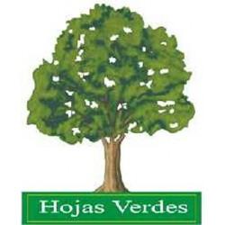 Bono Hojas Verdes
