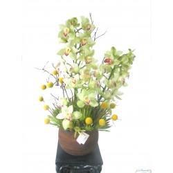 Arreglo de Orquídeas