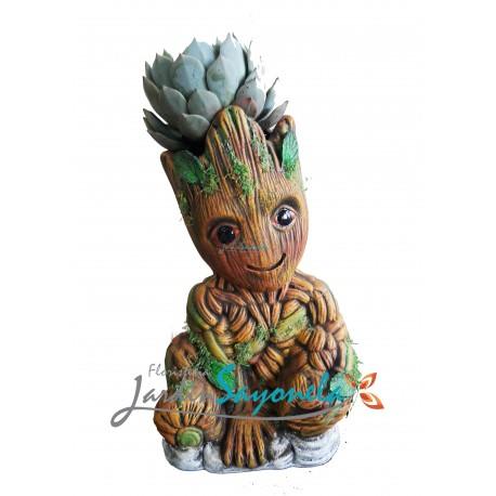 Yo Soy Groot 1 !