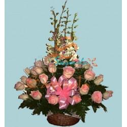 Rosas Bicolor y Dendrobium