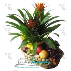 Planta de Bromelia y frutas