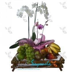 Jardín de plantas orquídeas y frutas
