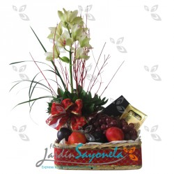 Navidad orquídeas Cymbidium flores y chocolates