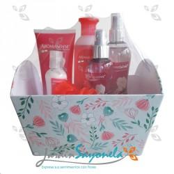 Kit de cosméticos para dama