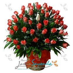 48 Rosas color a elección