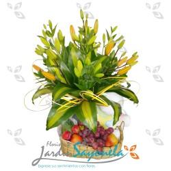 Lirios del japón, frutas y peluche